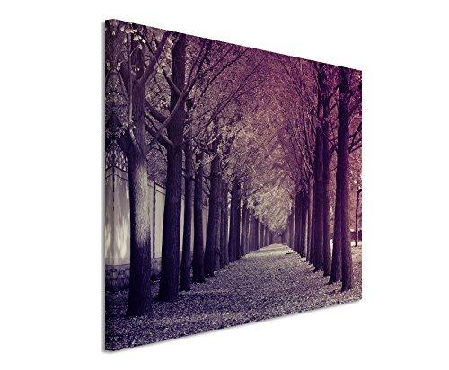 120x80cm Wandbild Fotoleinwand Bild in Mauve Herbst Allee Gingkobäume