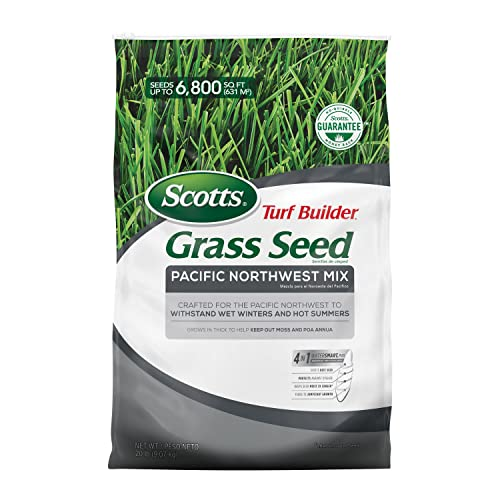 Best scotts turf builder grass seed