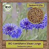 BIO Kornblume Samen blauer Junge (Centaurea cyanus) Saatgut Blumensamen gute Bienenpflanze & Staude mit essbaren Blüten