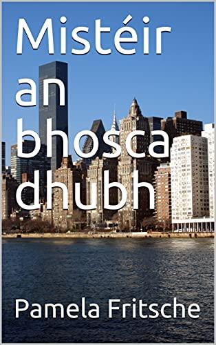 Mistéir an bhosca dhubh (Irish Edition)
