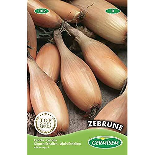 Germisem Zebrune Semi di Scalogno 3 g