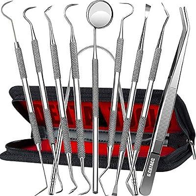 Dental Tools 10 Pack