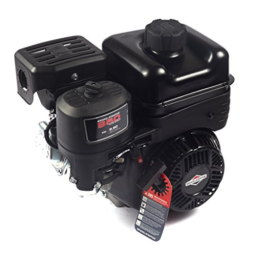 Briggs & Stratton 130G32-0022-F1 Briggs and Stratton 9.5 GT Horizontal Shaft Engine, Black