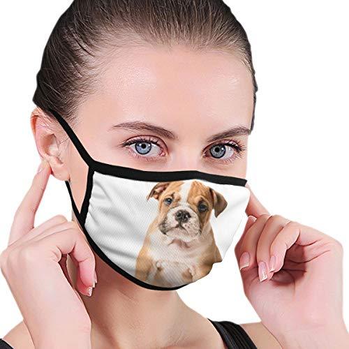 XINGAKA Gesichtsbedeckung,Netter Welpe der englischen Bulldogge lokalisiert auf weißem Hintergrund,Sturmhaube Unisex Wiederverwendbar Winddicht Staubschutz Mund Bandanas Outdoor Camping Motorrad