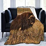Fleece Blanket 50' x 60' Musk Ox Horns Nature Home Flannel Fleece Soft Warm Plush Throw Blanket for Bed/Couch/Sofa/Office/Camping