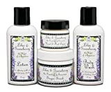 Lilac and Gooseberry Travel Trial Size Set | Lotion, Body Wash, Scrub, and Hand & Foot Cream | Travel Size 1-2 oz Products | Yennefer Perfume Scent of a Sorceress by Bella Des Natural Beauty