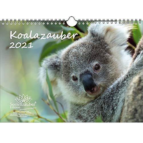 Koalazauber DIN A4 Kalender für 2021 Koalabären, Koala - Geschenkset Inhalt: 1x Kalender, 1x Weihnachts- und 1x Grußkarte (insgesamt 3 Teile)