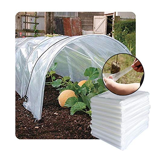 GDMING Transparent Plant Covers, 0.1mm Thickness Rainproof Keep Warm High Transparency PE Covering Plastic, For Greenhouse Film Planting Shed Tarp Sheet, Customizable (Color : Clear, Size : 6x10m)