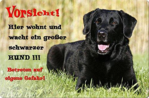 +++ LABRADOR Retriever - Metall WARNSCHILD Schild Hundeschild Sign - LAB 15 T27