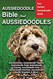 Aussiedoodle Bible And Aussiedoodles: Your Perfect Aussiedoodle Guide Aussiedoodles, Aussiedoodle Puppies, Aussiedoodle Dogs, Aussiedoodle Training, Aussiedoodle Size, Aussiedoodle Nutrition, & More!