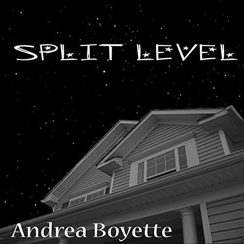 Split Level audiobook cover art