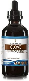 Clove Tincture Alcohol-Free Liquid Extract, Organic Clove (Syzygium Aromaticum) Dried Flower Buds (4 FL OZ)