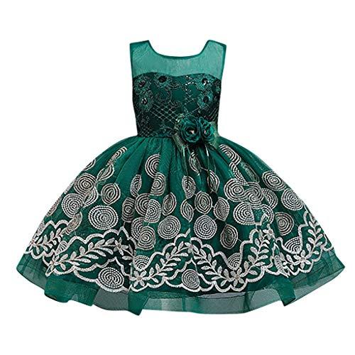 LuckyGirls Princess Dress Little Girl Elegant Party Dress Compleans Little Girls Girls Dresses Dance Ceremony Casual Sleeveless Dresses