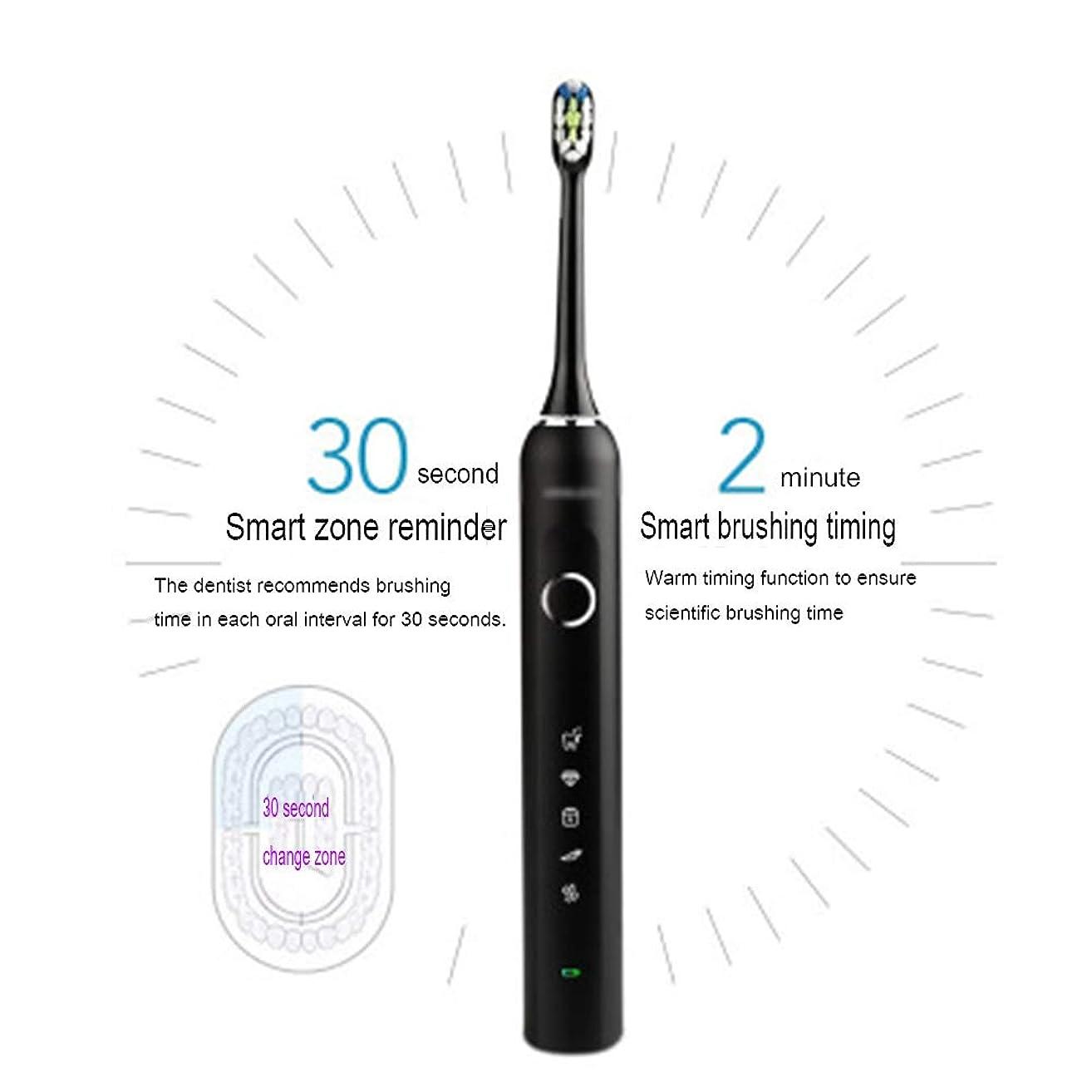 壮大なアパート警告するスマートなタイマーが付いている歯科医の再充電可能な音波の歯ブラシとしてきれいな電動歯ブラシ6時間充満最低90日の使用5つの任意モード旅行歯ブラシ,B