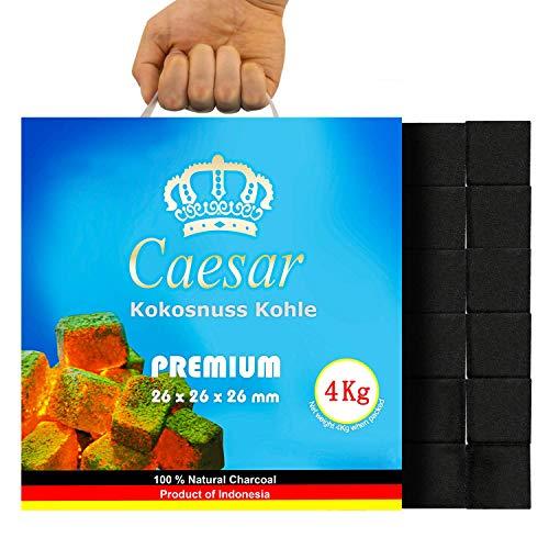 Caesar 4KG | Premium Kokosnuss Naturkohle für Shisha & BBQ [Shisha Kohle] 26 mm | 256 Stück