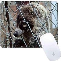 マウスパッド長方形マウスパッド動物刑務所捕われの身アナグマ悲しみ自然#755720保護260mm210mm3mm