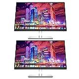 HP EliteDisplay E24q G4 24 Inch IPS LED Backlit Monitor 2-Pack, QHD
