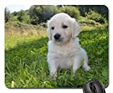 Gaming Mouse Pads,Mouse mat,Golden Retriever Puppy Puppy Dog Nature