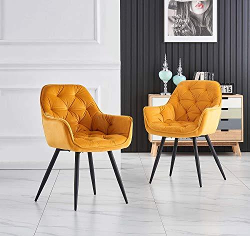 Greneric 2X Sessel Esszimmerstuhl aus Stoff (Samt) Wohnzimmerstuhl Farbauswahl Retro Design Armlehnstuhl Stuhl mit Rückenlehne Sessel Metallbeine Schwarz (Gold, 2)