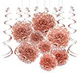 Rose Gold Bachelorette Party Hanging Decorations - Wedding Party Foil Swirls Tissue Paper Pom Poms Flowers Bridal Shower Party Garlands Baby Shower Birthday Party Decorations, 20Ct