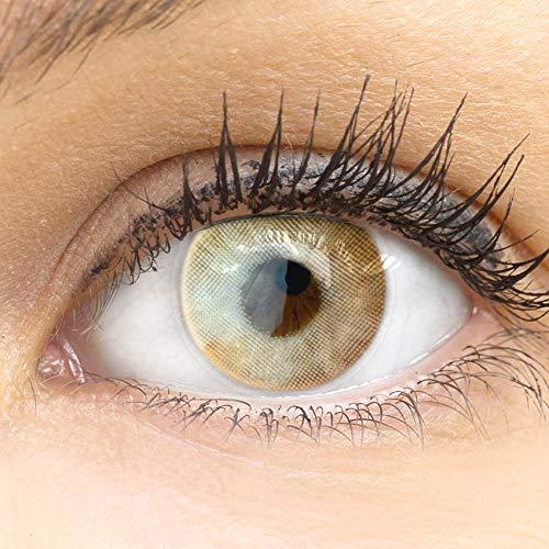 GLAMLENS Valencia Orange braun + Behälter | Sehr stark deckende natürliche braune Kontaktlinsen farbig | farbige Monatslinsen aus Silikon Hydrogel | 1 Paar (2 Stück) | DIA 14.20 | Ohne Stärke