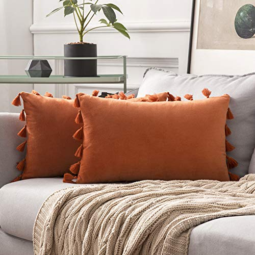 MIULEE Velvet Tasseled Cushion Covers Bohemian Indian Embroidered Decorative Square Throw Pillow Case Pillowcases for Couch Livingroom Sofa Bed with Invisible Zipper 12x20 inch 30x50cm 2Pieces Orange