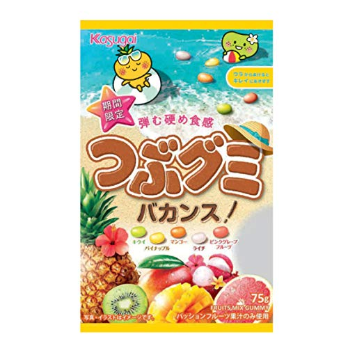 春日井製菓 つぶグミバカンス 75g ×6袋