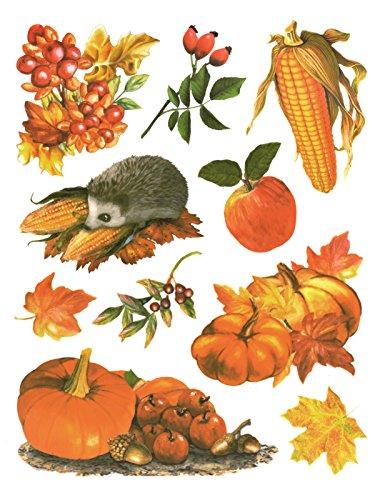 dpr. Fensterbild Set 10-tlg. Herbst Herbstfrüchte Kürbis Igel Hagebutte Zweig Blätter Laub Fenstersticker Herbstdeko