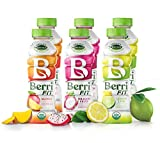 Berri Fit 3-Flavor Variety Pack | Organic Sports Drink Alternative | Natural Plant-Based Electrolytes - Certified Organic - Non-GMO - Low-Calorie Fitness Beverage - Paleo Friendly | 16oz | Pack of 6