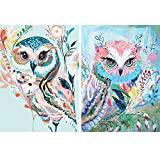 HaiMay 2 Pack DIY 5D Diamond Painting Kits Full Drill Rhinestone Painting Owl Diamond Pictures for Wall Decoration, Colorful Diamond Painting Style (Canvas 12×16 Inch)