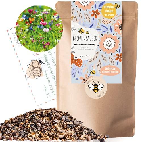 Bienenwiese I 100g I 100m² Blumenwiese Samen mehrjährig und einjährig I Samen für Bienen Blumenmischung I Wildblumensamen für Balkonblumen und Wildblumen I bunte Bienenweide I Blumensamen