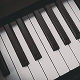 Liszt: Consolation No. 1 in E Major: Andante con moto