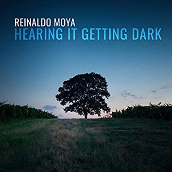 Reinaldo Moya: Hearing It Getting Dark