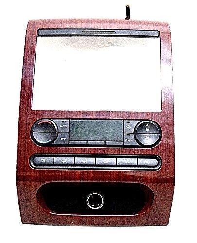 05 ford wood grain dash - 4