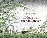 ¿Dónde Van Cuando Llueve