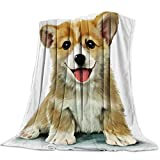 T&H Home Flannel Fleece Microfiber Throw Blanket Corgi Blanket, Corgi Puppy Lover Pet Owner Soft Warm Fuzzy Lightweight Bed Blankets for Couch Bedroom Living Room 40'x50'