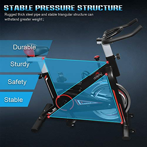 Dolphy Exerciser Spin Bike for Indoor cycling and Toned Thigh