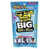 アイオン サモコンクールBIG 100X10cm ホワイト PTK-003