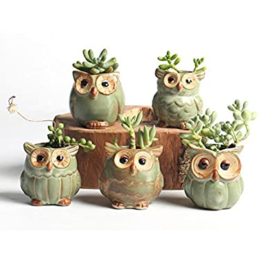 NOVMAY 2.5 Inch - Mini Vintage Owl Ceramic Succulent Plant Pot Planters Flower Pot Container (Dark color (Set of 5 pcs))
