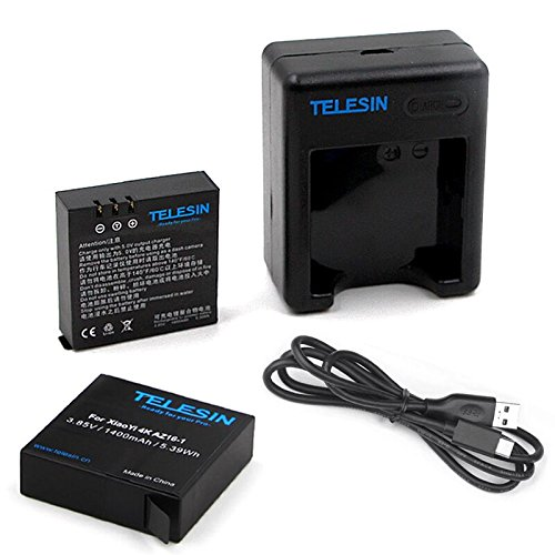TELESIN 2pcs 1400mAh Backup Rechargeable Li-on Battery with USB Dual Battery Charger for Xiaomi Yi 4K Sport Action Camera 2