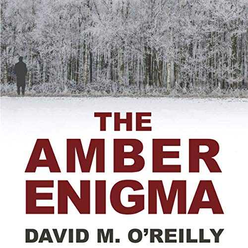 The Amber Enigma audiobook cover art