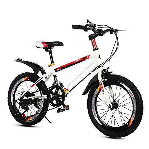 Bicicleta para niños Caixia montaña Bicicletas Deportes Ciclismo al Aire Libre Bold Acero al Carbono Asiento Ajustable, 18 20 Pulgadas con 2 Frenos(Size:20inch,Color:A)