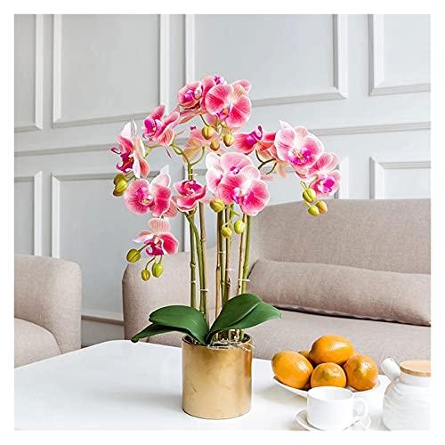 DIWA Flores Artificiales de Phalaenopsis, Flor y jarrones Falsos de Seda, Flor de plástico Realista con Tallo Color : Fuchsia Phalaenopsis (5)
