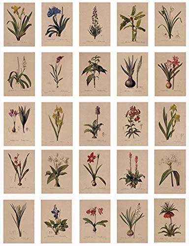24 Blatt Postkarten, Vintage Postkarten, mit schöner Blumensprache gedruckt auf Kraftpapier, Liebe, Freundschaft, Leben, Motivation Grußkarten - Lilie