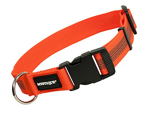 Mystique gummiertes Halsband 30mm Breite orange, Variante: 55-65cm