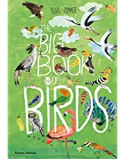 The Big Book of Birds: 0 (The Big Book series)