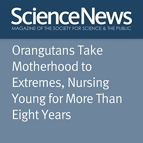 Orangutans Take Motherhood to Extremes, Nursing Young for More Than Eight Years audiobook cover art