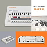 Roland-TR-909 (115BPM)