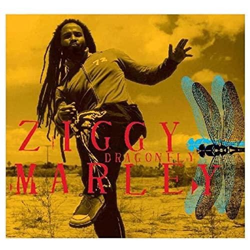 Qqwer Ziggy Marley Album copertina poster Wall Art Quadri su tela per la decorazione del soggiorno, 50 x 50 cm x 1 pezzo, senza cornice