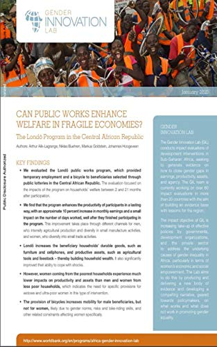 Can Public Works Enhance Welfare in Fragile Economies? The Londo Program in the Central African Republic (Africa Gender Policy Briefs) (English Edition)